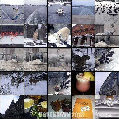 københavnbilder2013mars